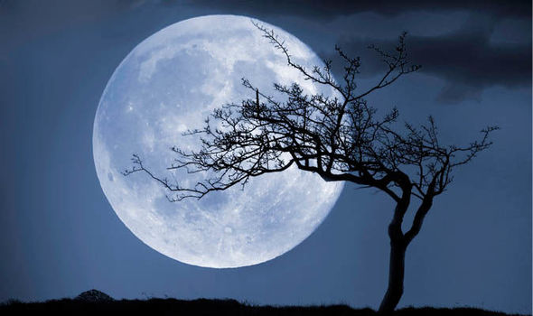 Full-moon-horoscope-today-november-beaver-moon-astrology-zodiac-1049225.jpg