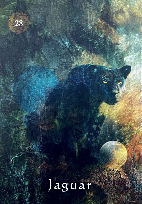 Jaguar - Daily Oracle Reading for Creatives and Artists — The Creative Mojo